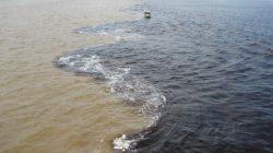 Течения мирового океана